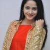 Divya Nandini (2)
