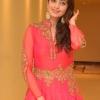 Pranitha Subhash (3)