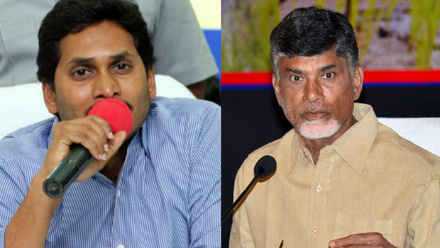 ysrcp and tdp political parties are always words war every time