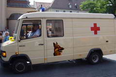 ambulance for dogs