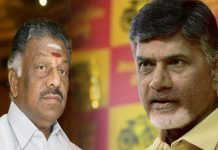 o panneerselvam will meet to chandrababu in velagapudi secretariat