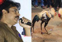 pawan kalyan says kodi pandalu Telugu culture