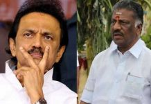 stalin shock to panneer selvam