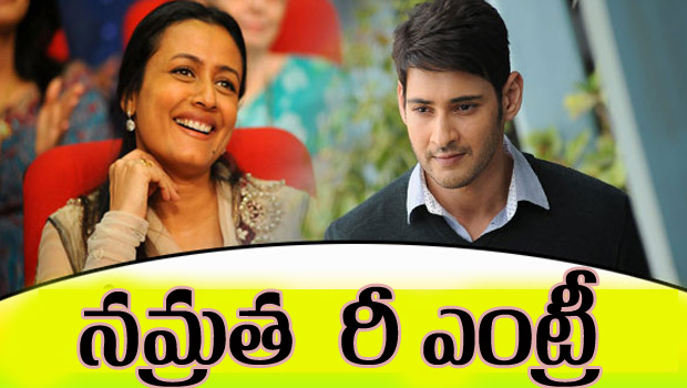 mahesh wife namratha re entry in movies