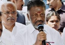 o panneerselvam says about palaniswamy