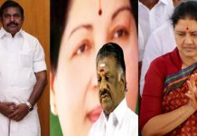panneerselvam fight on palanisamy and sasikala in social media