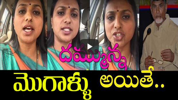 mla roja arrested in gannavaram airport