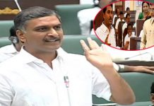 harish rao says about ap assembly situation in telangana assembly