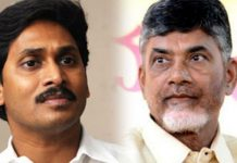 tdp won the mlc elections in kadapa