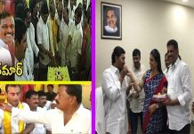 ysrcp party win teachers graduations constituency mlc election tdp wins mlc elections