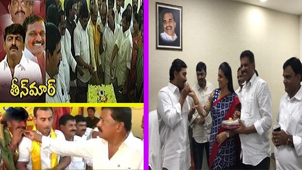 ysrcp party win teachers graduations constituency mlc election tdp wins mlc elections
