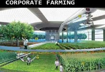 corporate farming in india
