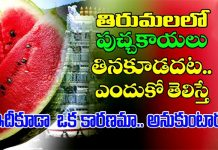 ttd bans watermelon in tirumala because of chirutha