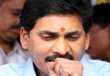 tdp leaders insulting jagan